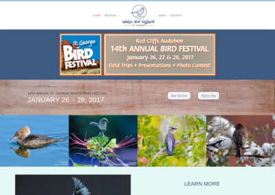 St. George Winter Bird Festival